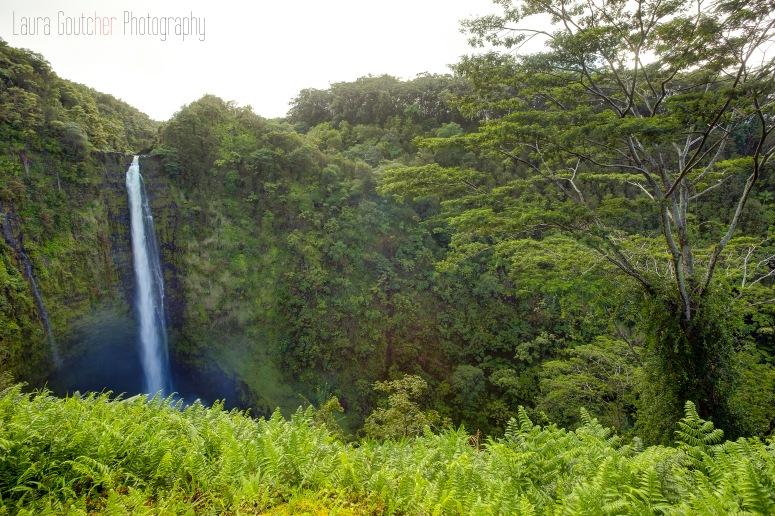 Hawaii2014_005_4x6