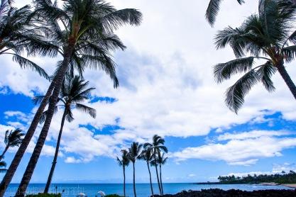 Hawaii2014_008_4x6