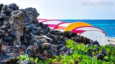 Hawaii2014_010_16x9