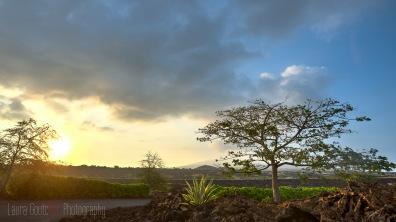 Hawaii2014_013_16x9