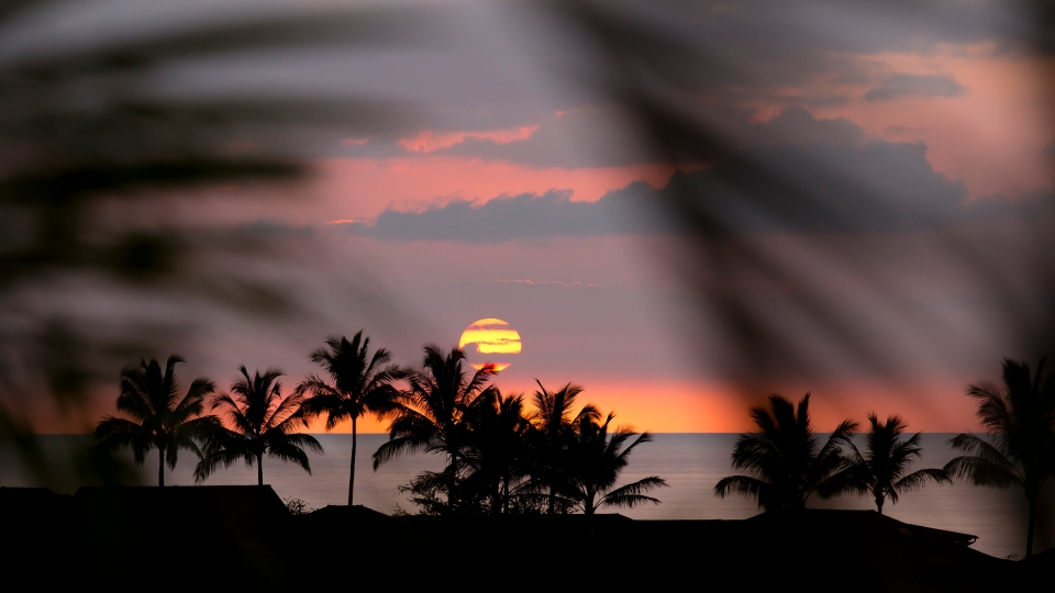 Sunset_Ball_07.2014_002