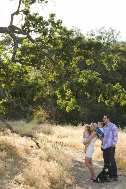gallery_CirboFamily_MiniSession_022